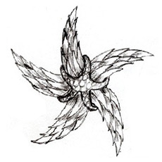 Starfish brooch sketch